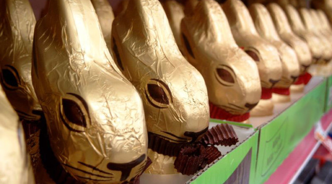 Focus on research: Does your Easter chocolate have palm oil in it?
